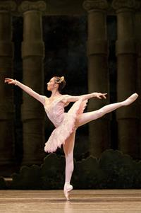 Bild: THE SLEEPING BEAUTY (Petipa/Ashton/Dowell/Wheeldon)
