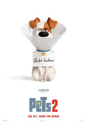Bild: MovieNight: Pets 2